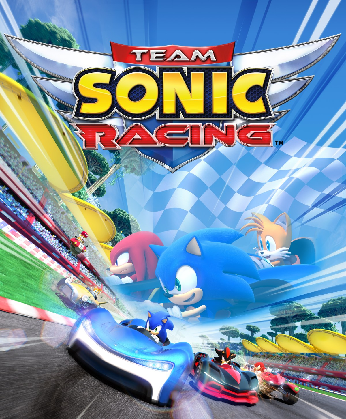 You are currently viewing Team Sonic Racing Review – Great Kart Racing Action
